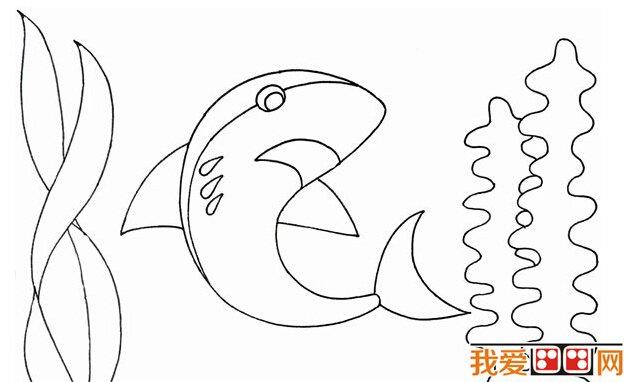 儿童画教程:大鲨鱼画法步骤详细教程(2)