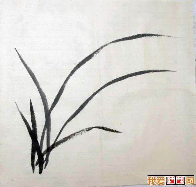 中国画教程:兰花的画法解析(3)