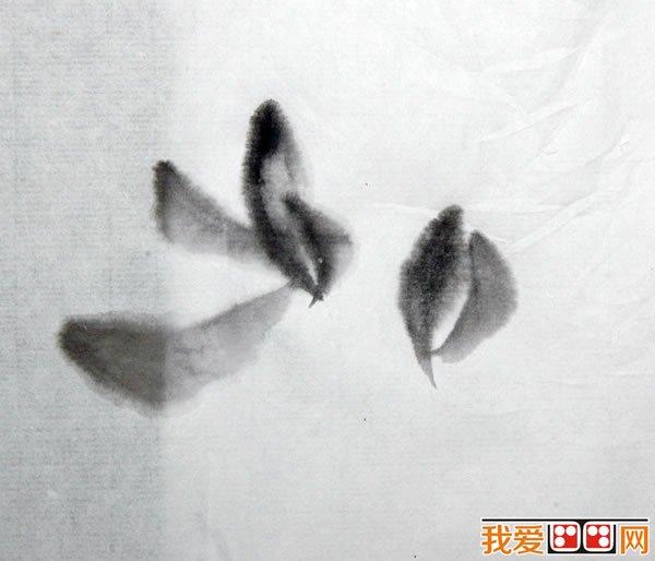 中国画教程:兰花的画法解析(4)