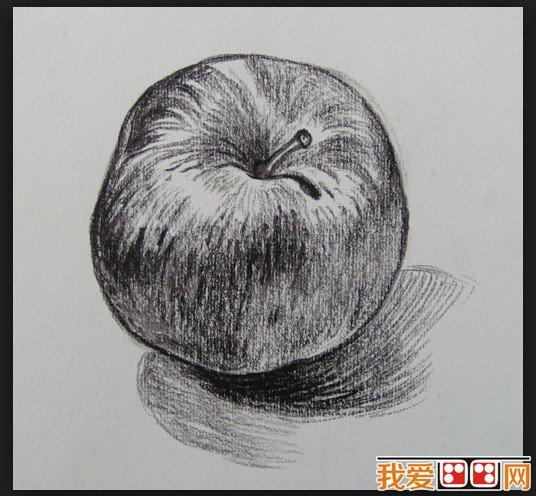 优秀的苹果素描作品欣赏 2