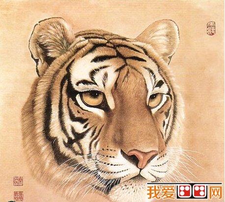 中国水墨画老虎头的画法与技巧(2)