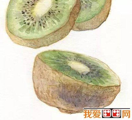 水彩画教程:猕猴桃水彩画步骤详解(4)
