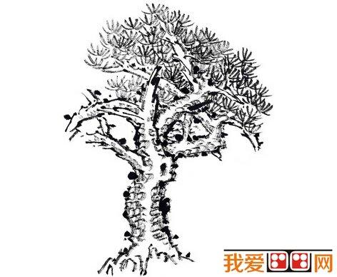 简笔画 盆景 盆栽 手绘 线稿 植物 472_388