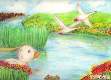 彩铅画海马绘画教程 海马的画法图文步骤 3
