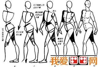 人物 速写人体结构的要点