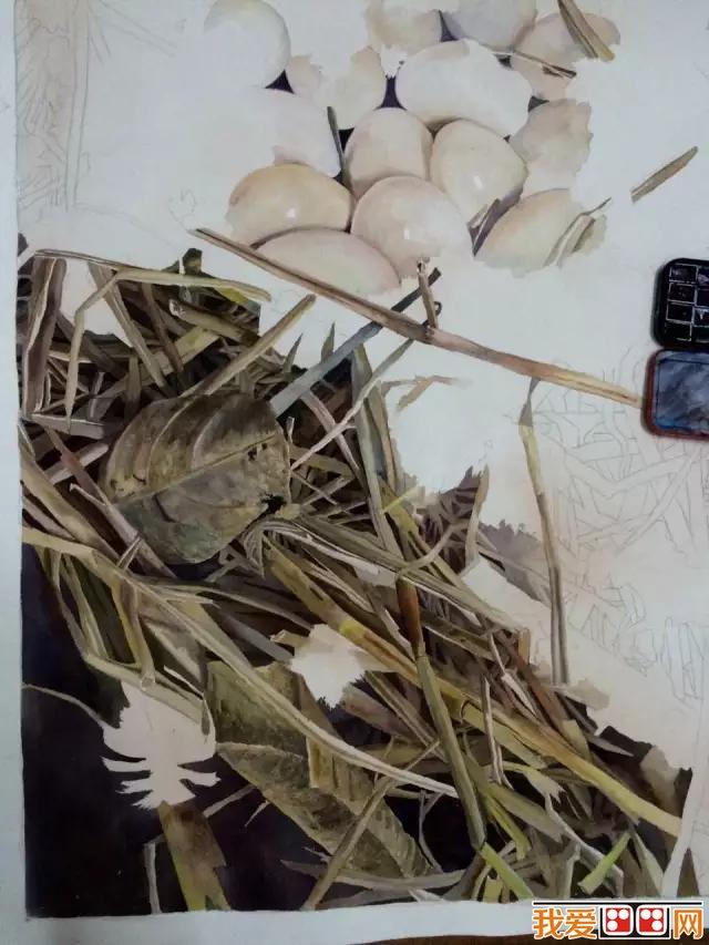 水彩画技法 > 逼真鸡蛋水彩画绘画教程(3)      三,在画水稻秸秆时,是