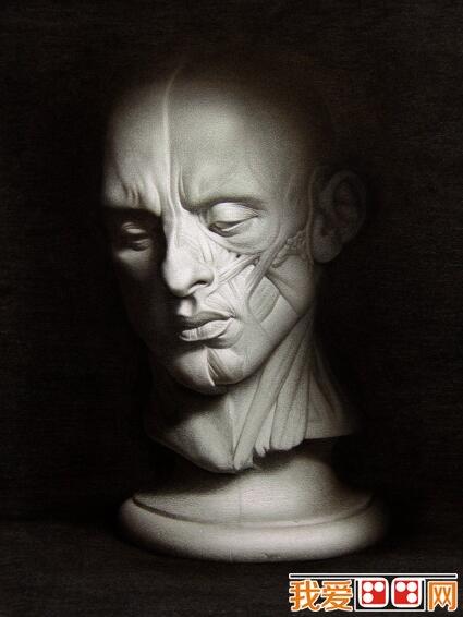 刻画精细的石膏像素描作品欣赏_素描教程_学画画_我爱