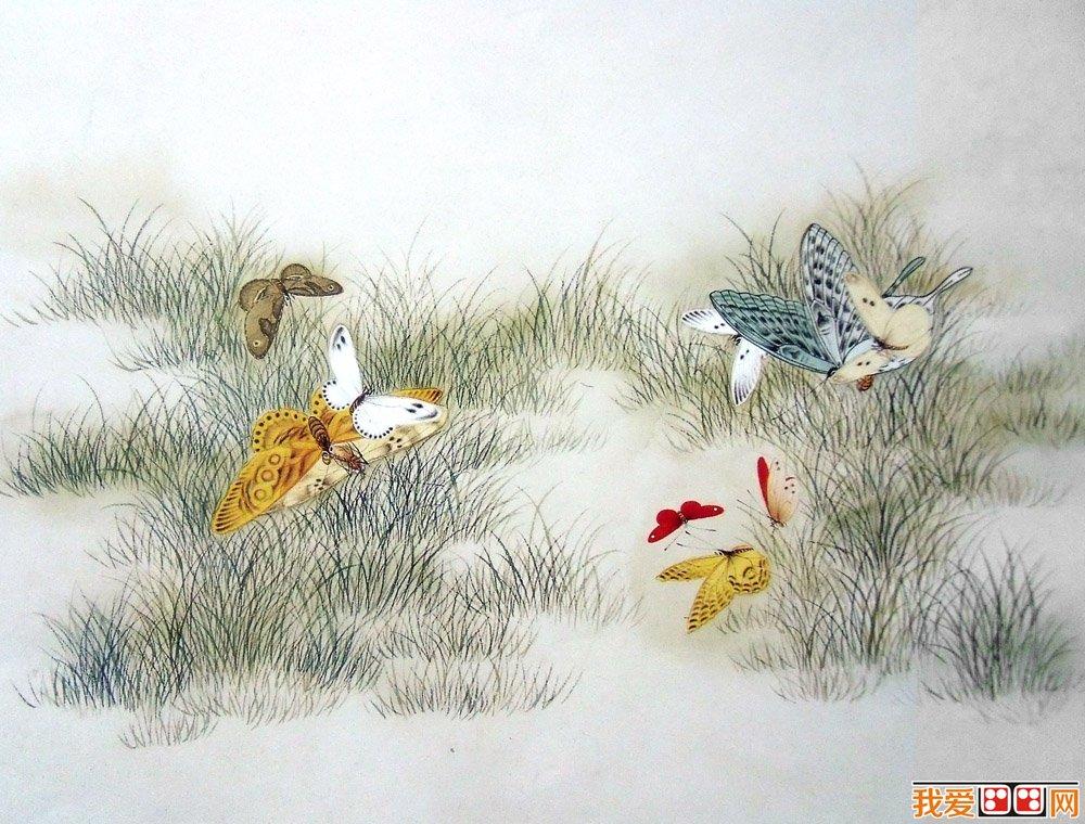 中国画蝴蝶的画法