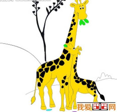 动物花纹图片画衣服