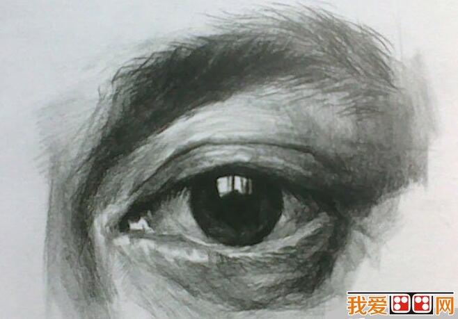 素描教程:眼睛结构素描步骤详解(2)