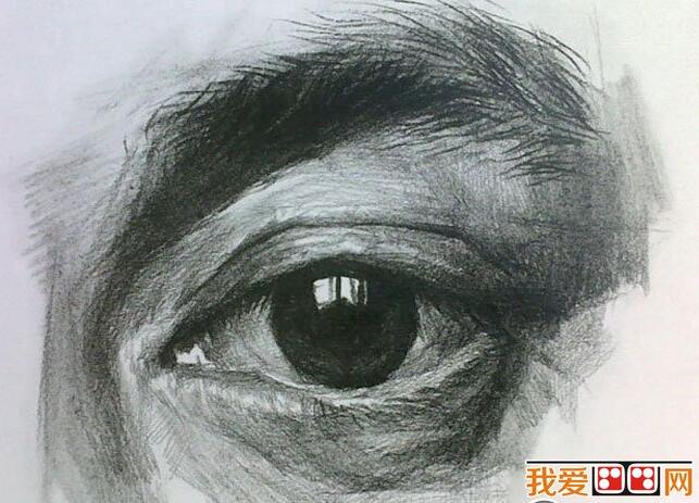 素描教程:眼睛结构素描步骤详解(3)