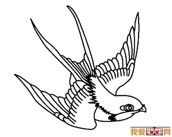 小燕子简笔画作品欣赏图片