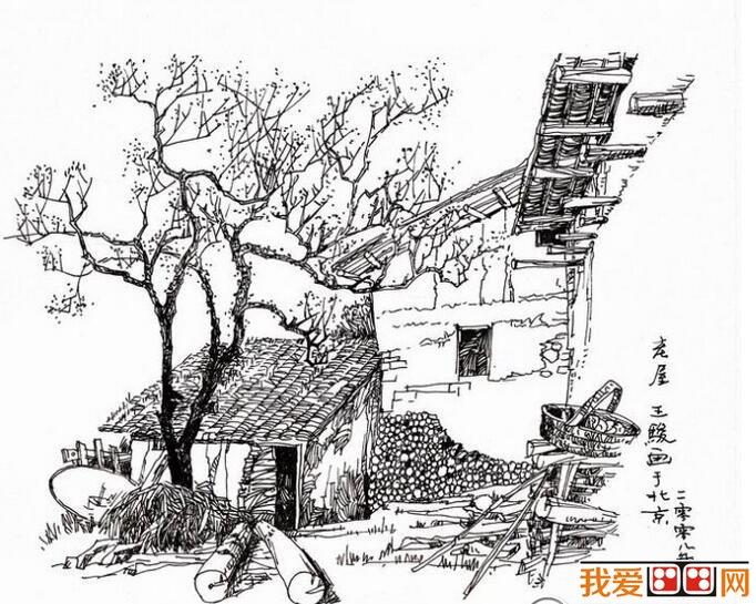 钢笔速写乡村房屋风景画
