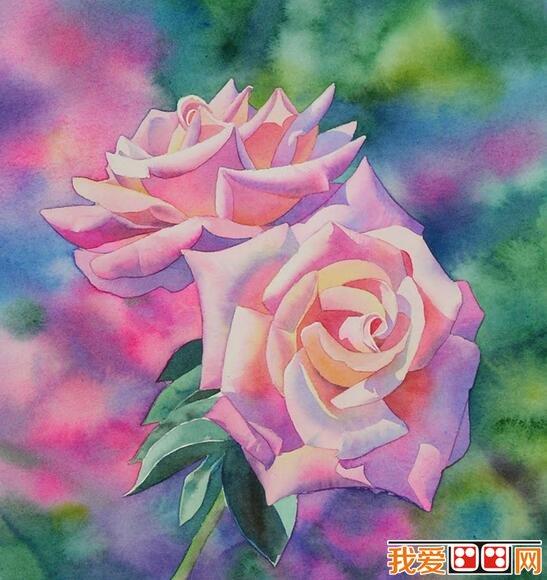 水彩月季花绘画步骤教程(6)