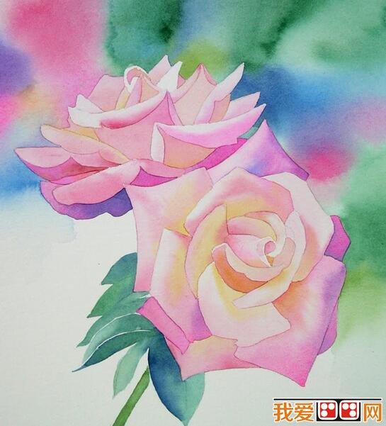 水彩月季花绘画步骤教程 4