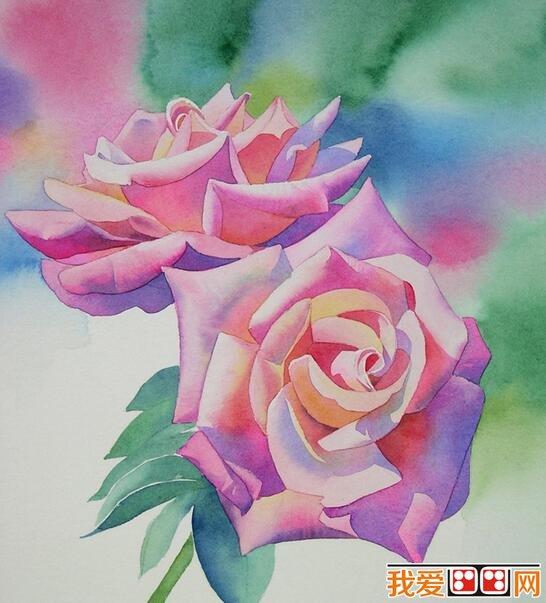 水彩月季花绘画步骤教程(5)