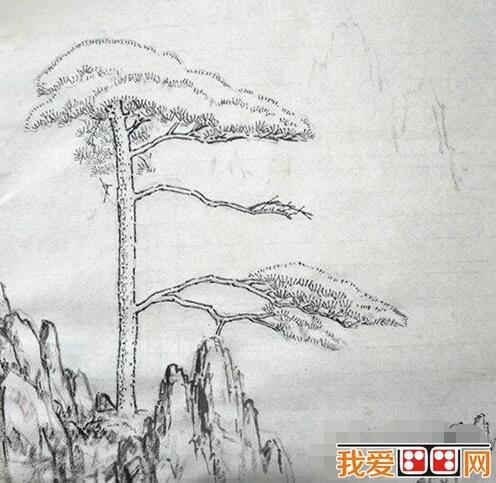 中国画迎客松作画步骤教程解析(2)