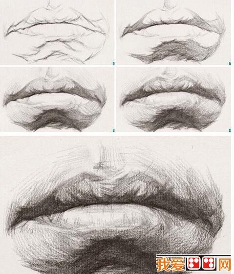 素描嘴巴的绘画教程(3)