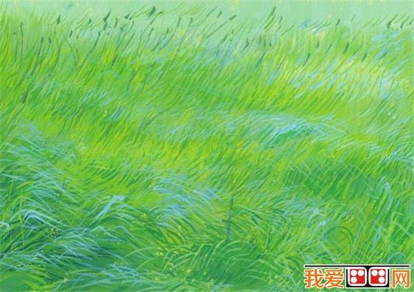 夏天 景色 简笔画 大自然彩色