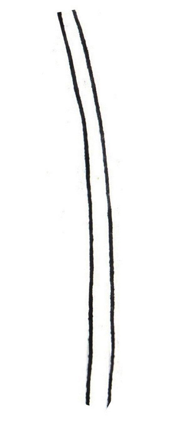 国画白描兰花绘画步骤教程(2)