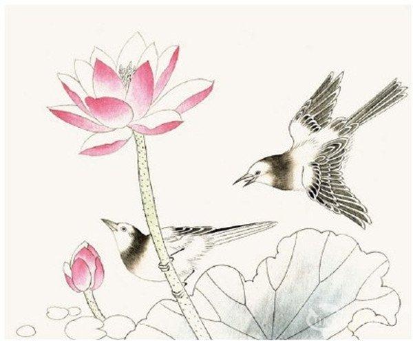 一起来学习 工笔画入门脊苓鸟的画法吧.