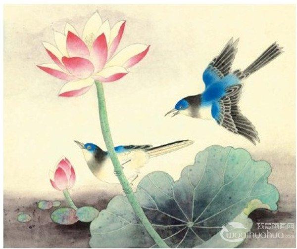 工笔画入门脊苓鸟的画法 2图片