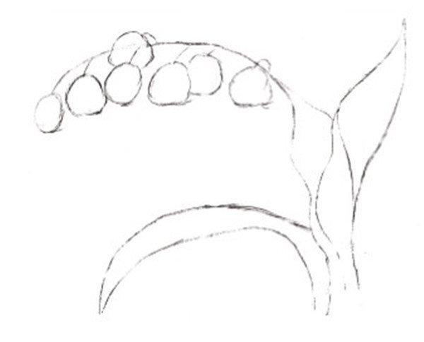 水粉铃兰花绘画技法(3)