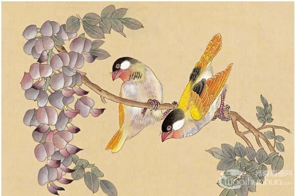 工笔画芙蓉鸟的绘画入门步骤教程