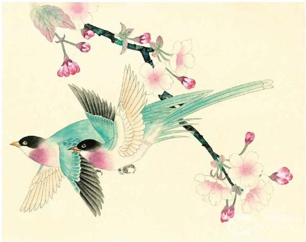 工笔绶带鸟的绘画步骤入门教程(4)_国画教程_学画画
