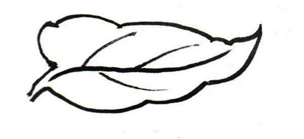 白描牡丹局部三 3,单片叶子的画法 白描牡丹