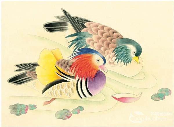 工笔画鸳鸯的绘画入门步骤教程(4)