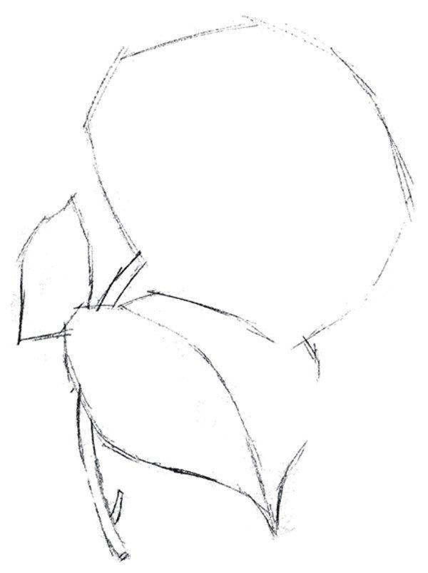 水粉绣球花的绘画技法(4)_水粉画教程_学画画_我爱