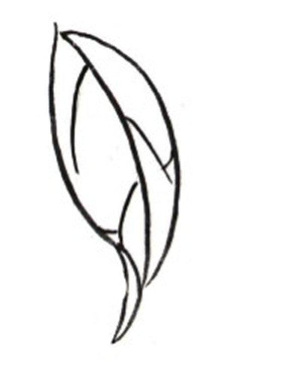 """芍药,别名将离、离草,属五桠果目,毛茛科 芍药属多年生草本花卉。块根由根颈下方生出,肉质,粗壮,呈纺锤形或长柱形,粗0.6~3.5厘米。芍药花瓣呈倒卵形,花盘为浅杯状,花期5~6月,一般独开在茎的顶端或近顶端叶腋处,原种花白色,花瓣5~13枚。园艺品种花色丰富,有白、粉、红、紫、黄、绿、黑和复色等,花径10~30厘米,花瓣可达上百枚。果实呈纺锤形,种子呈圆形、长圆形或尖圆形。芍药被人们誉为""""花仙""""和""""花相"""",且被列为""""六大名花""""之一,又被称为&q"""