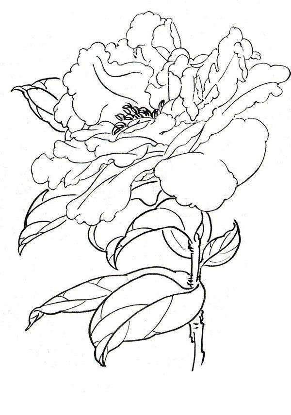 简笔画 手绘 线稿 600_856 竖版 竖屏