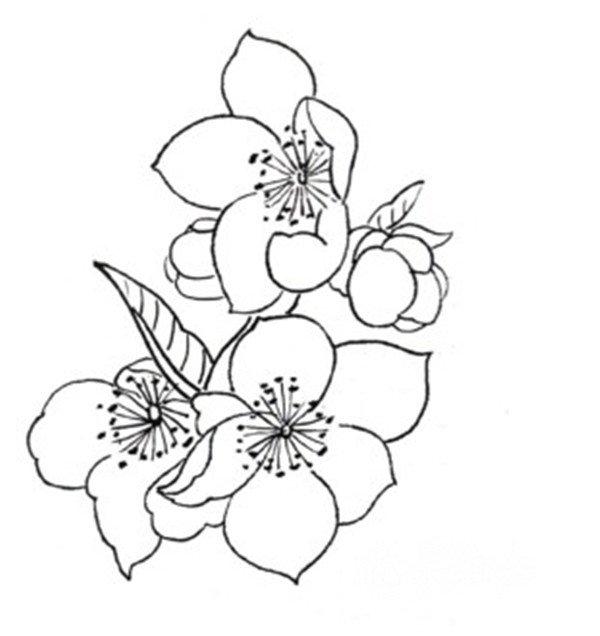 简笔画 设计 矢量 矢量图 手绘 素材 线稿 600_636