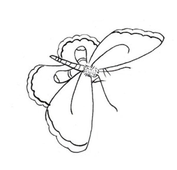 杏花蝴蝶白描手法步骤教程(3)