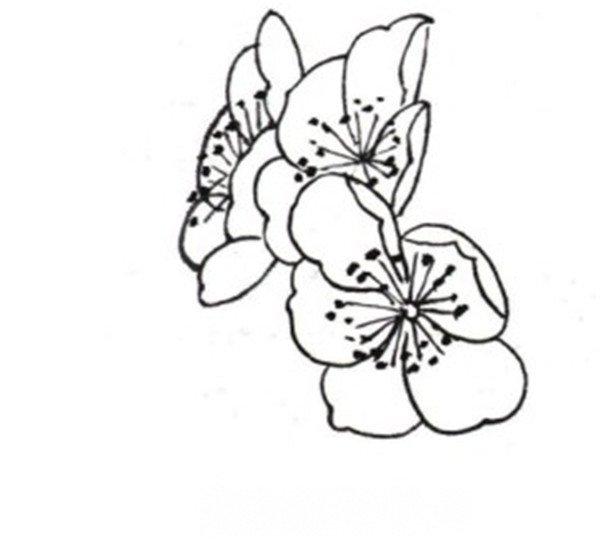 白描桃花蝴蝶组合侧面