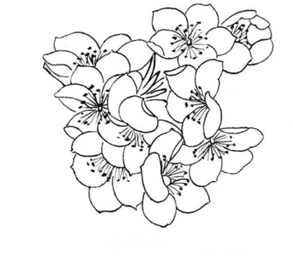 简笔画 设计 矢量 矢量图 手绘 素材 线稿 600_529