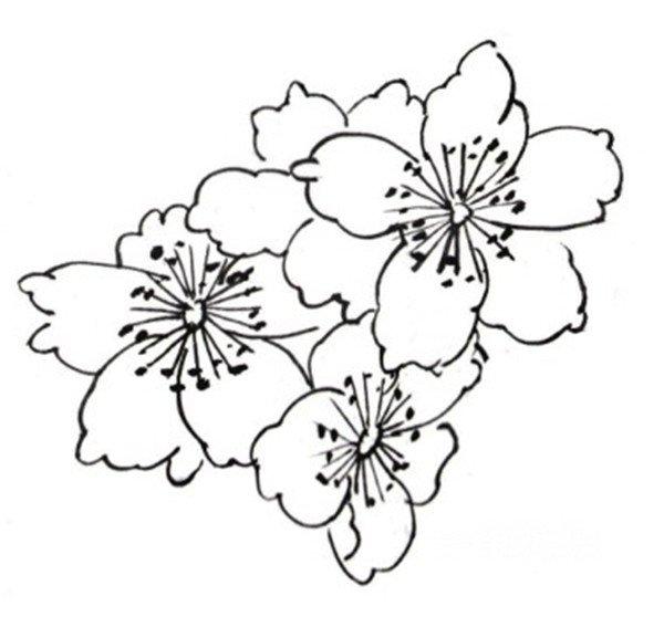 简笔画 设计 矢量 矢量图 手绘 素材 线稿 600_558