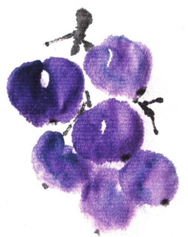 国画葡萄的绘画步骤三-国画水果葡萄的画法图片
