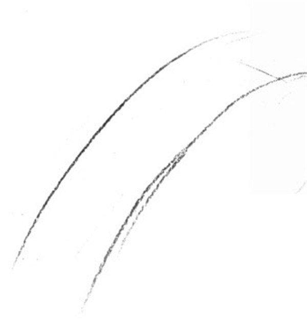 静物素描:椰子树叶的绘画步骤_素描教程_学画画_我爱