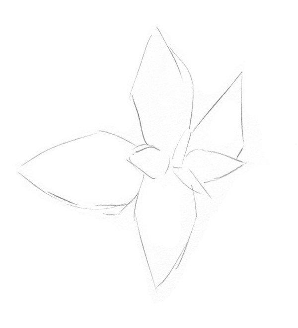 简笔画 设计 矢量 矢量图 手绘 素材 线稿 600_660