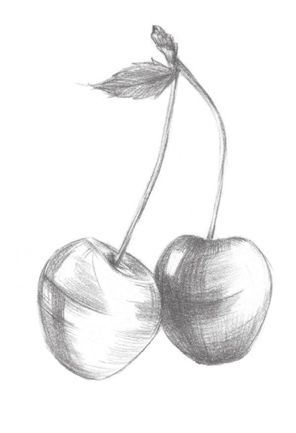 学画画 素描教程 静物素描 > 素描樱桃的绘画技法(3)
