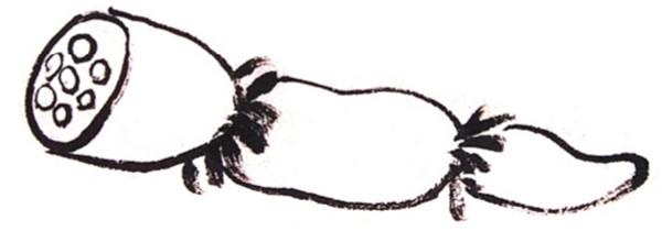 国画莲藕的绘画步骤四