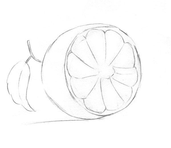 柚子简笔画图片大全