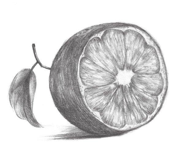 素描橙子的绘画步骤八
