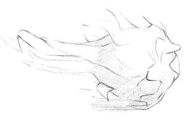 素描静物火龙果的绘画步骤教程(2)
