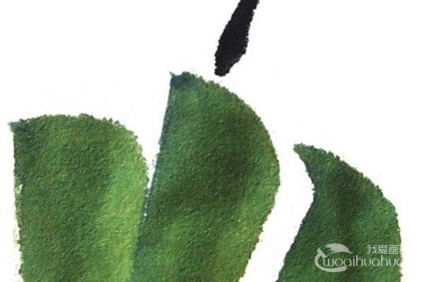 国画青椒的绘画技法