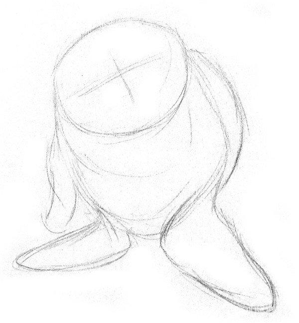 素描动物:素描小海豹的绘画步骤教程