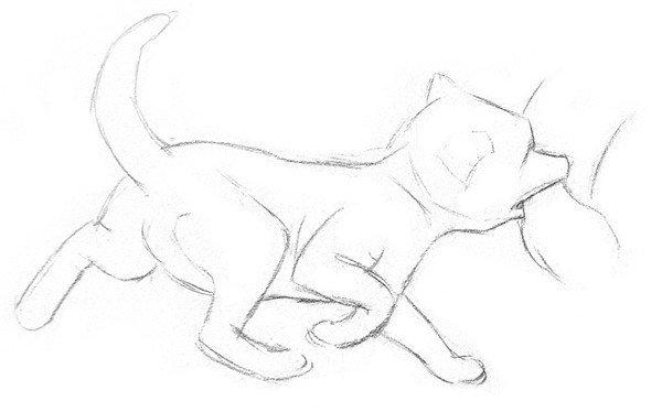 素描小狐狸绘画教程